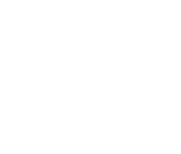 logo cie insomniarts